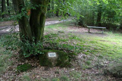 Steeds meer 'vakstenen' verdwijnen uit de Staatsbossen