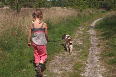 Met de hond aan de wandel