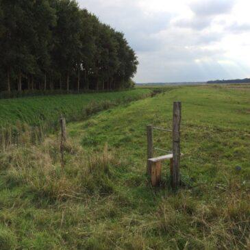 Route Eexterveen door de nieuwe natuur langs de Hunze