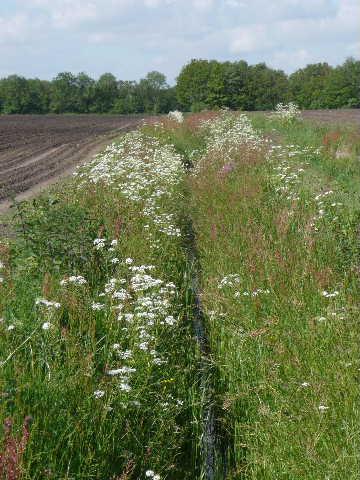 Drie Knapzakroutes om het voorjaar te genieten
