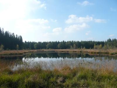 Knapzakroute Zwiggelte voortaan via voormalig Kamp Westerbork